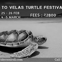 Eco-Trip to Velas Turtle Festival 2017