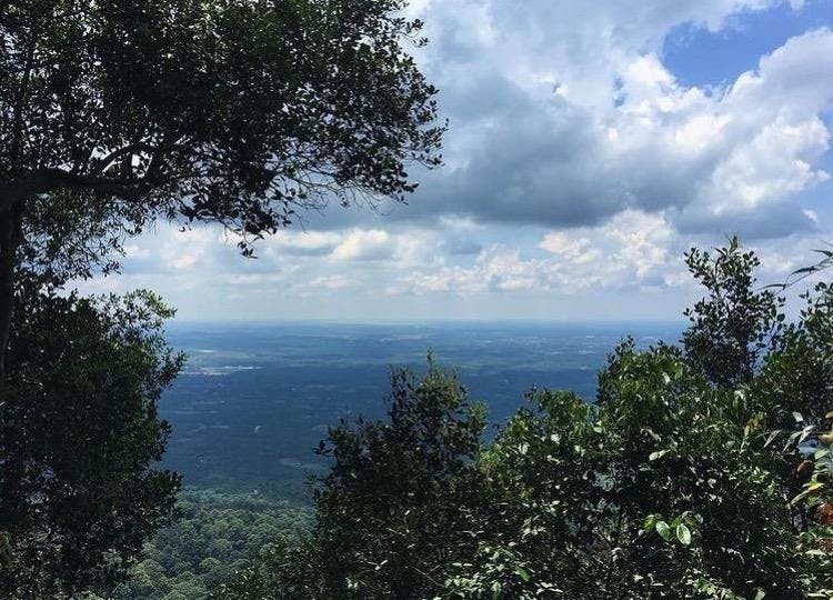 Beginners Hike Gunung Panti