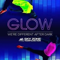 Glow in the Dark Trampoline Sky Zone
