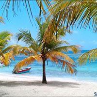 Viaja a Isla Saona con gozaderatoursRD