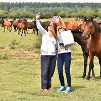 Konji Kredinske ade - nova bajkovita tura