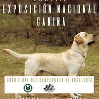 Exposicin Nacional Canina