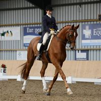 Blackthorn Dressage Clinic - Lateral and poles