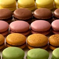 Focus on French Macaron