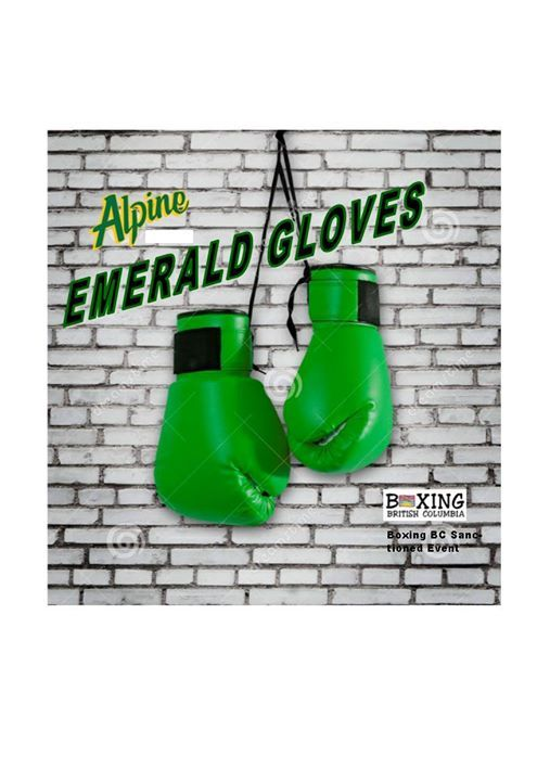 Boxing BC Emerald Gloves