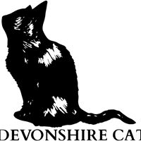 Devonshire Cat Spice Nights - India &amp the Sub-Continent