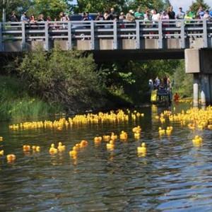 Rubber Ducky Festival