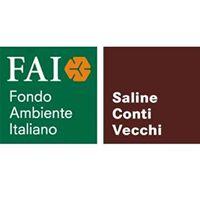 FAI - Saline Conti Vecchi