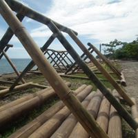 Sponsor an artificial reef for Philippines