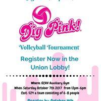 Dig Pink Volleyball Tournament