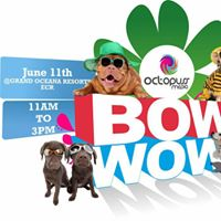 Bow Wow The Dog Fashion Show