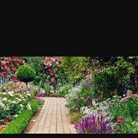 Granville Garden Day 2017