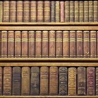 Sejem rabljenih knjig