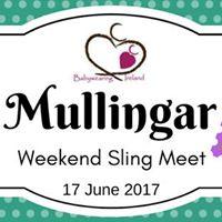 BWI Mullingar Weekend Sling Meet - June 2017