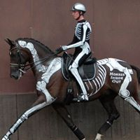 Dressage Dissected Evening talk with Gillian Higgins