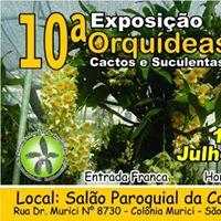 10 Exposio de Orqudeas