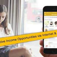 Alternative Income Opportunities via the Internet &amp Mobile