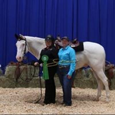 Heart of Texas Western Dressage at Austin Equestrian Center