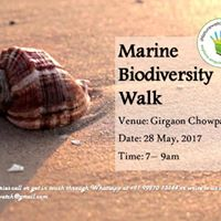 Marine Biodiversity Walk at Girgaon Chowpatty