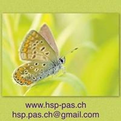 High Sensitive Persons - HSP Switzerland