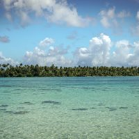 Voyaging through Pacific Islands and Collections