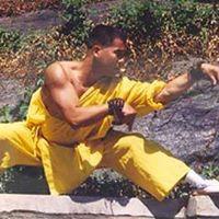 Shaolin Mantis Seminar