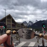Zazzi Planner at Canmore Mountain Market