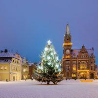 Rozsvcen vnonho stromu  Erleuchtung des Weihnachtsbaumes