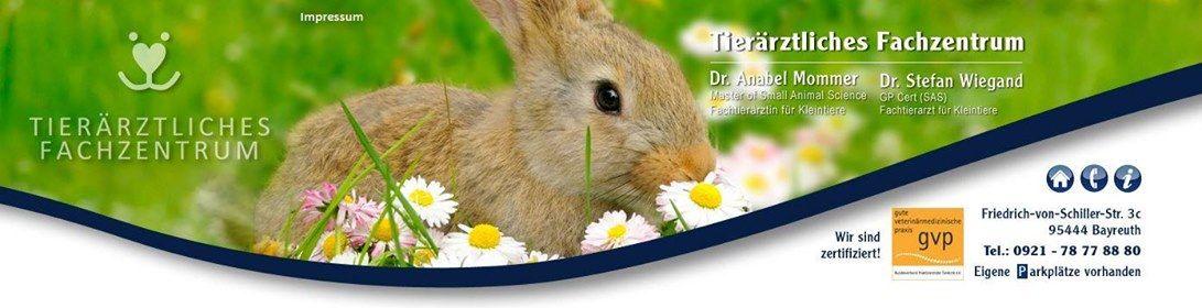 Kaninchen-Sammelimpftermin mit dem Filavac-Impfstoff (RHD 12)