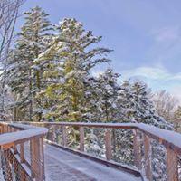 Winterwunderland - Der Wald und seine Bewohner im Winter