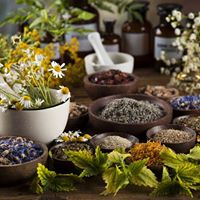 An Intro to Natural Therapies for Health &amp Beauty