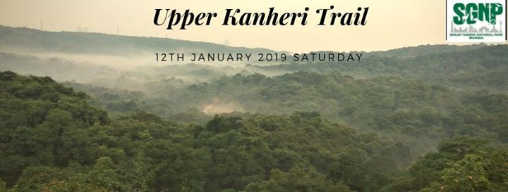 Saturday Forest Walk at Kanheri Upper Trail