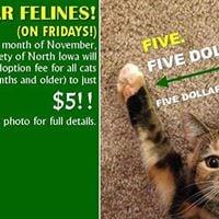 Five Dollar Felines (Black Friday Special Online only)