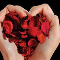 Habitat For Humanity Fundraiser  Power of Love Valentine Event