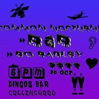 Common Nocturne  Bo Radley