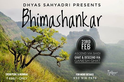 Trek to Bhimashankar ascend via Shidi Ghat & descend via Ganesh