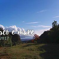 Tra Bosco e Mare - Trekking in Maremma