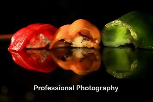 Professional Photography Course