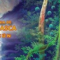 Ceremonia de ayahuasca sagrada y taller de activacin de la glndula pineal