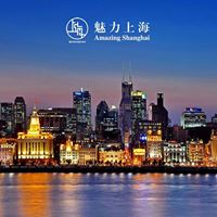 Lenygz Shanghai  fotkillts s installci megnyit