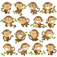 Summer Baby Sign Class - Cheeky Monkeys