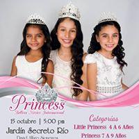 Princess BMI 2017