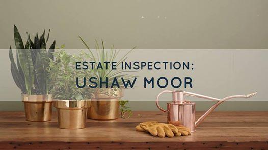 Estate inspection - Ushaw Moor