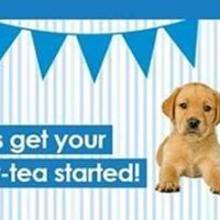 Tea Party in the Guide Dogs New Office