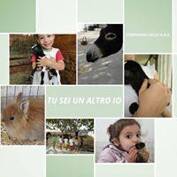 Tu sei un altro Io Convegno su Attivit Assistite con Animali