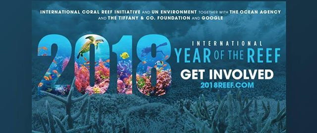 International Year of the Reef PechaKucha