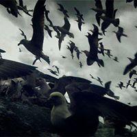 FKSA-Prizma filmklub s04e06 - Leviathan