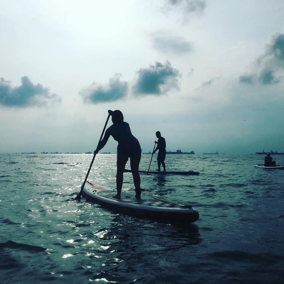SUP BEGINNER SESSION ( LEVEL 2 )