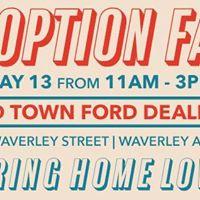 Adoption Fair at Mid Town Ford