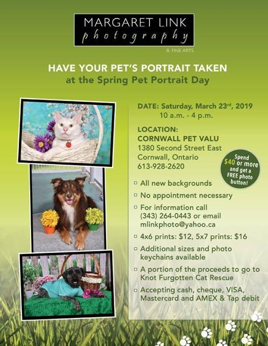 Pet Valu Cornwall Spring Pet Portraits Saturday March 23 10-4